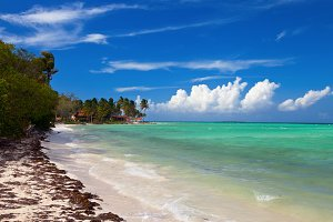 Tropical island waterfront beach