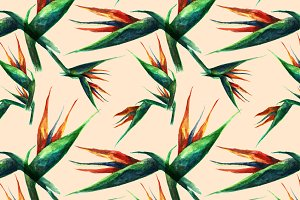 Bird of paradise tropical pattern