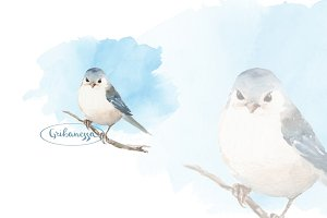 Cute watercolor bird and blue sky