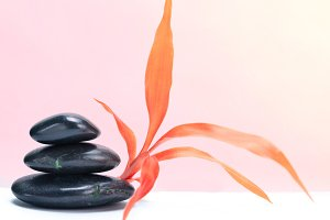 Black stones with pink leaf