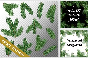 Fir tree branches vector set