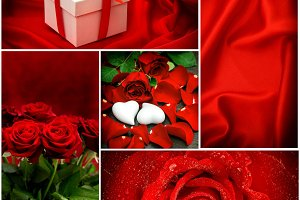 Red roses Valentines Day Love