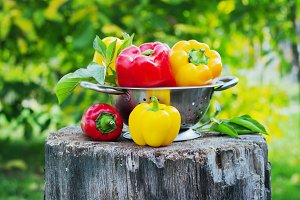 Fresh red and yellow peppers
