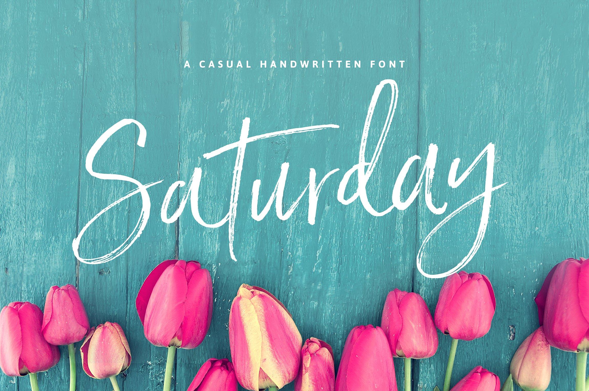 Saturday Script Brush Font Script Fonts Creative Market