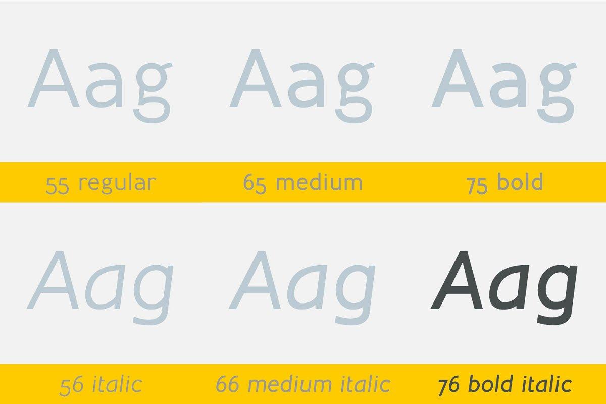 Inprimis Bold Italic ~ Sans Serif Fonts ~ Creative Market