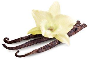 Vanilla sticks with a flower