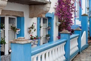 Flowered house