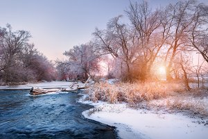 Winter forest at the river at sunset