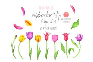 Watercolor Tulip flower clip art