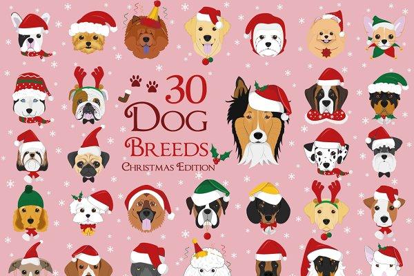 Christmas 30x Dog Breeds
