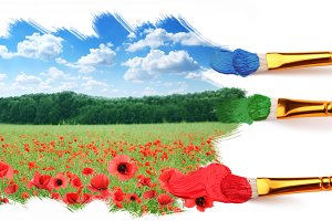 Three brushes paint a beautiful landscape with poppies.