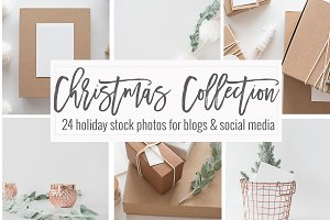 Neutral Christmas Photos