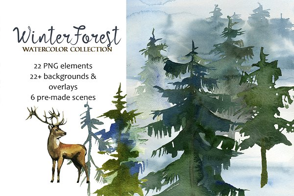 Forest Fir Trees Watercolor Clipart…