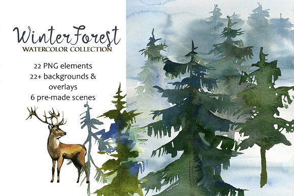 Forest Fir Trees Watercolor Clipart