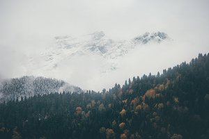 Foggy Mountains and autumn Forest