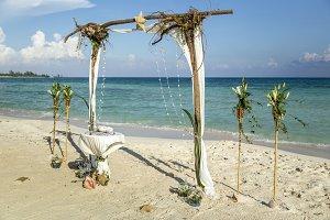 tree root wedding arch