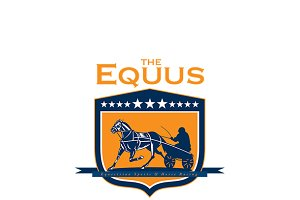 The Equus Horse Racing Logo
