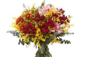 Mimosa flowers bouquet