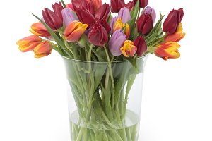 Tulips flowers in a vase