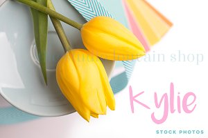Styled Stock Photo - Kylie 3