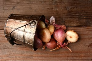 Onions & Shallots Spill From Bucket