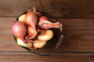 Onions and Shallots in Bucket