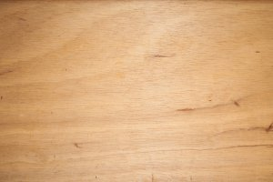 Bright Wood Texture