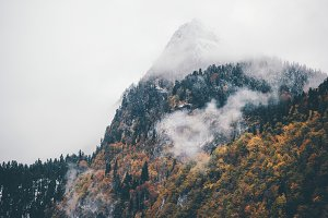 Foggy Mountains with Autumn Forest