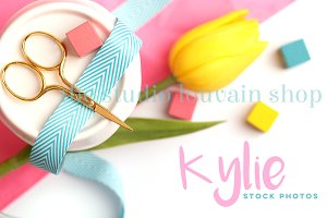 Styled Stock Photo - Kylie 6