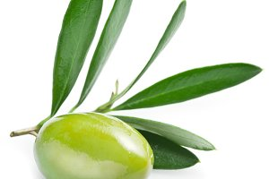 Olive with leaves on a white