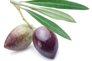 Two olives with leaves.