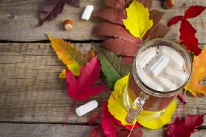 Cocoa with marshmallow on the background of bright autumn leaves