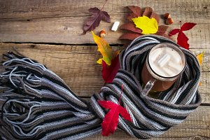 Cocoa with marshmallows, a striped scarf and bright autumn leave