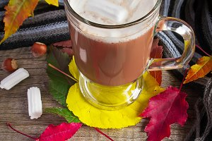 Warming of cocoa with marshmallows, scarf and autumn leaves on t