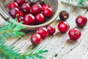 Fresh organic cranberries