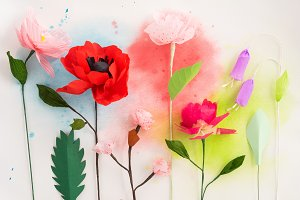 Paper flowers and watercolors