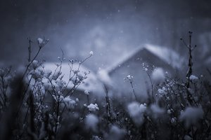Winter background greeting card