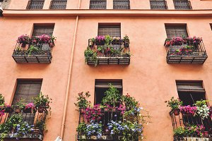 Granada windows