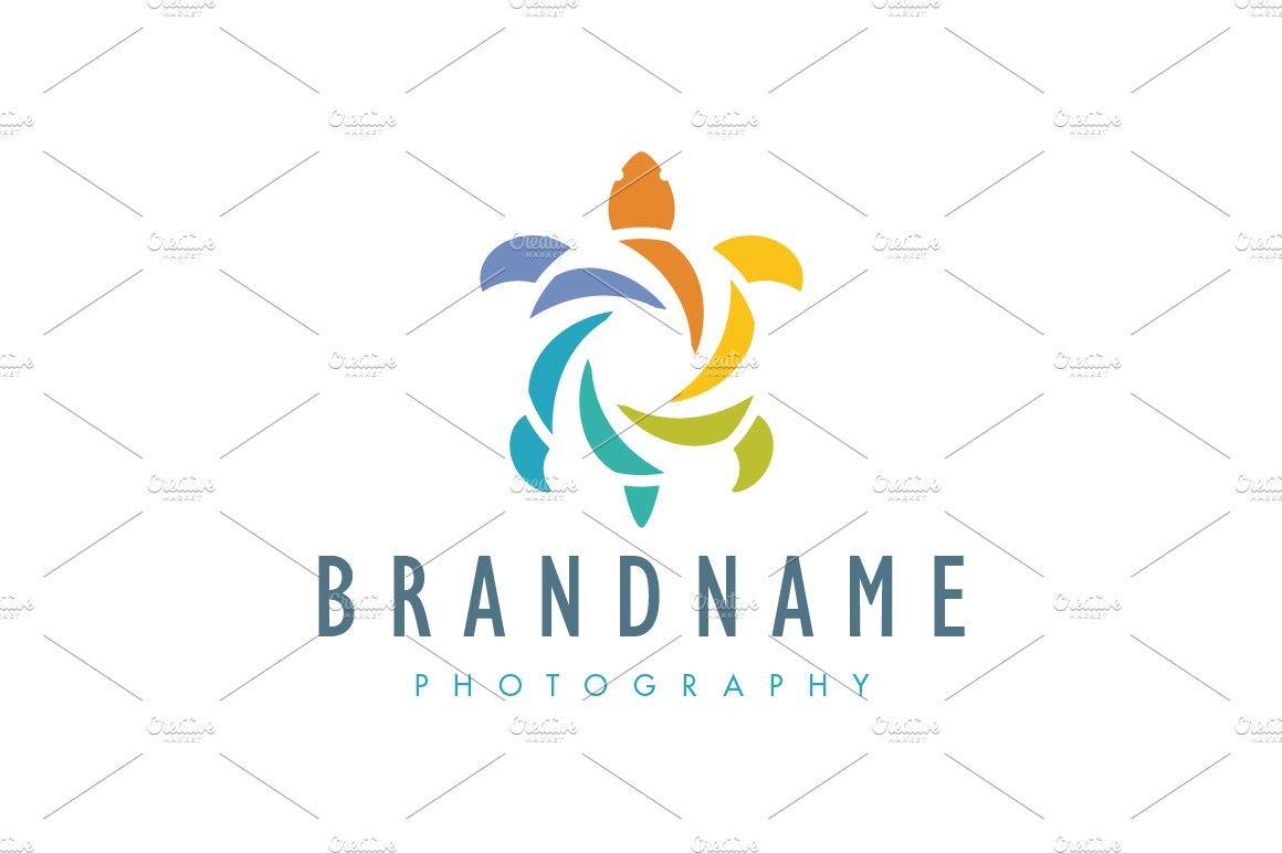 Shutter turtle logo logo templates creative market biocorpaavc