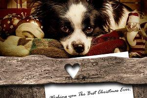 Dog and Santa, Christmas greeting.