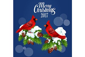 Cardinal red birds sitting on fir
