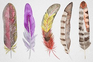 Feather set11