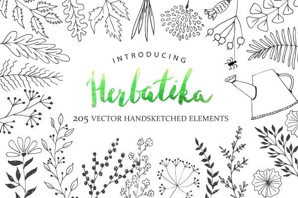 Herbatika Vector Sketched Set