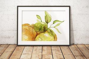 Watercolor citrus art poster