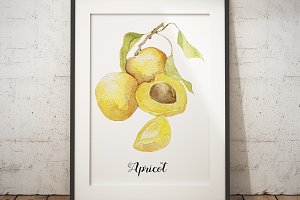 Watercolor apricot art poster