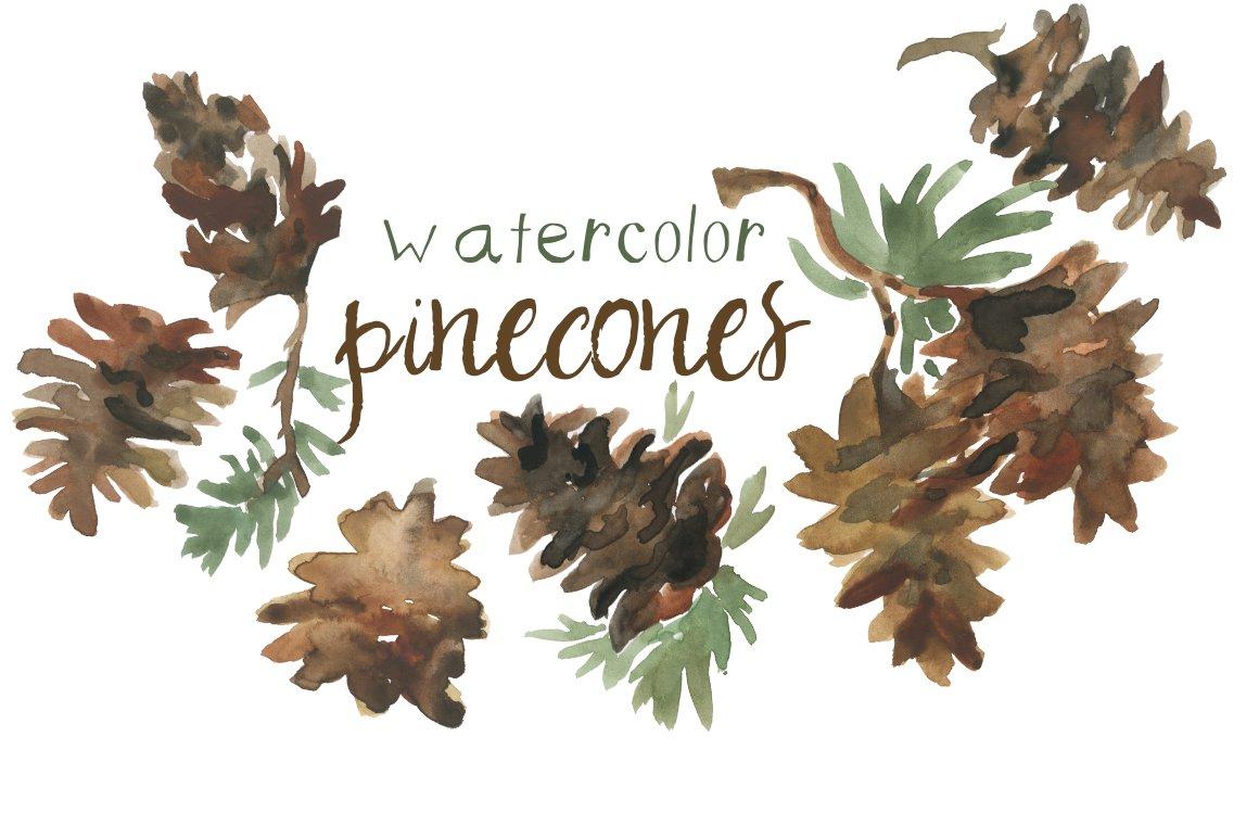 Watercolor Pinecones Clip Art ~ Illustrations ~ Creative ...