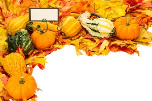 Fall decorative border with sign