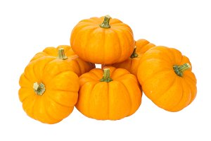 Small pumpkins on white
