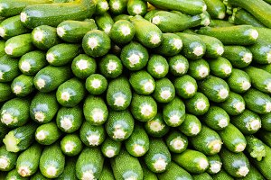 Zuchini squash or summer squash