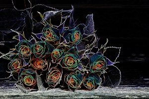 Abstract bouquet of roses